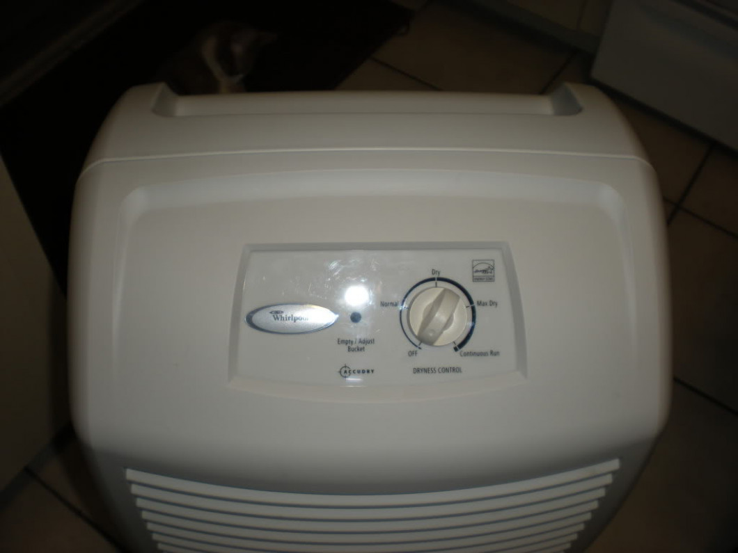 Using a Dehumidifier to Dry Out Your Modular Home